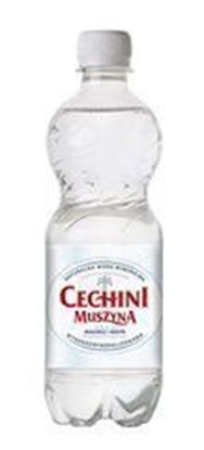 Picture of WODA MUSZYNA 500ML NGAZ PET CECHINI Biala
